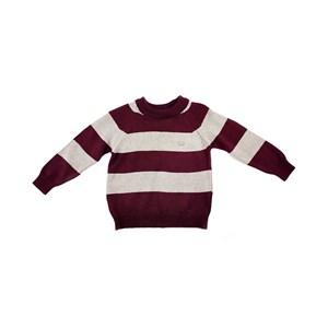 Blusa De Tricot Infantil / Baby Masculina - 1+1 Vinho