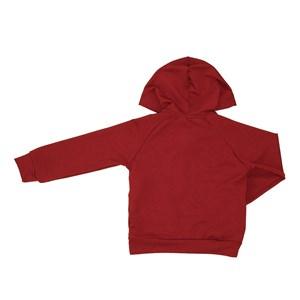 Blusa infantil masculina lisa em moletinho com capuz e ziper VINHO