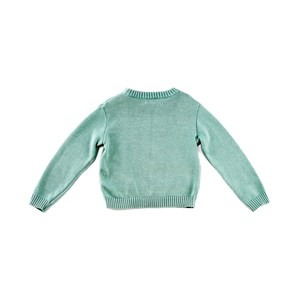 Blusa-Tricot Verde
