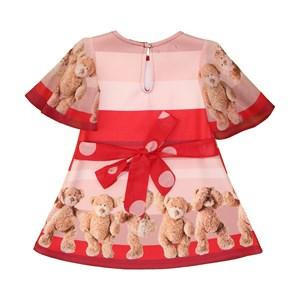 Vestido neoprene de ursinho com bolinhas e laço nas costas Vermelho